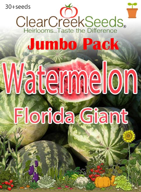 Watermelon – Florida Giant (30+ seeds) JUMBO PACK