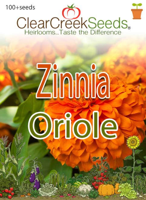 "Zinnia - ""Oriole"" (100+ seeds)"