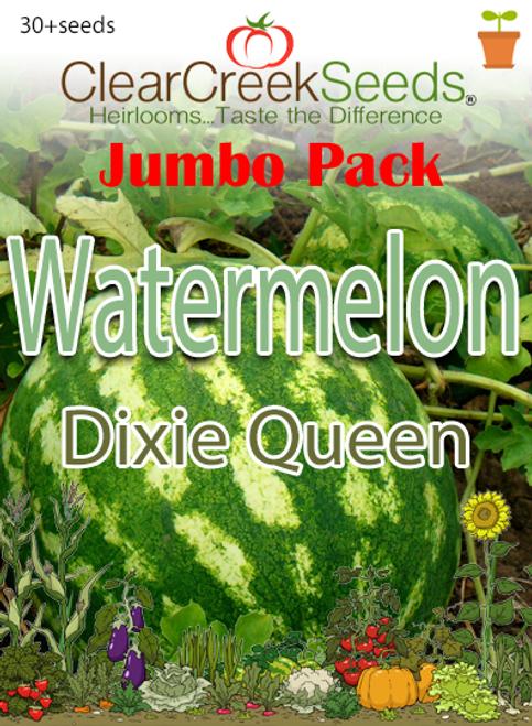 Watermelon - Dixie Queen (30+ seeds) JUMBO PACK