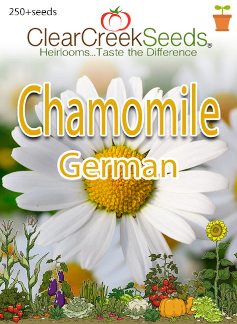 German Chamomile (250+ seeds)