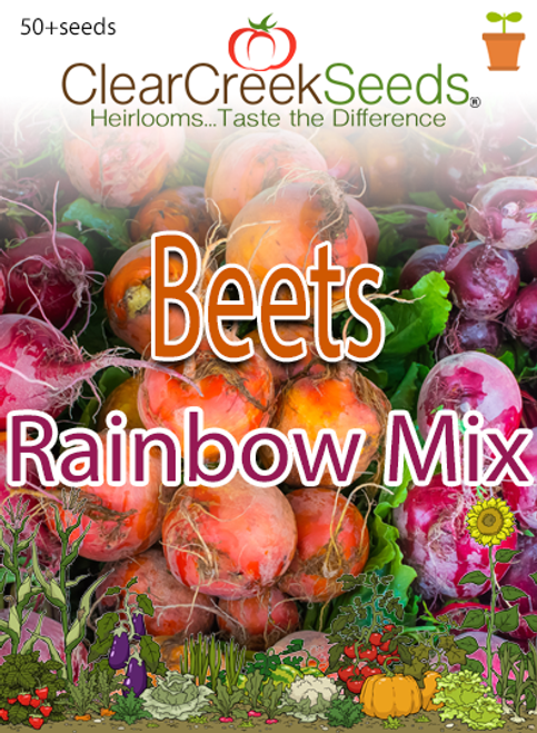 Beets - Rainbow Mix (50+ seeds)