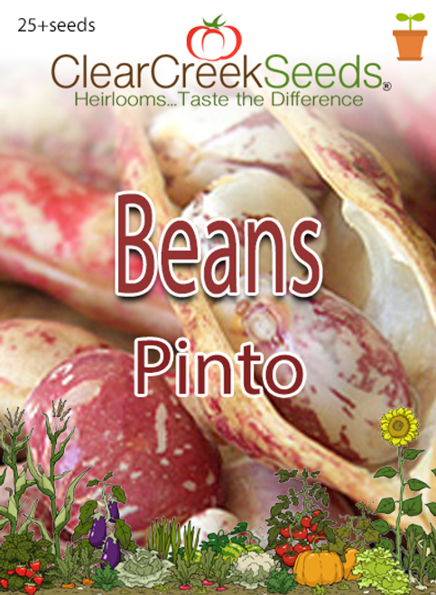 Bean-Pinto (25+ seeds)