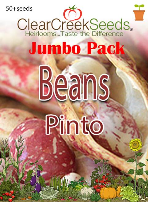 Bean-Pinto (50+ seeds) JUMBO PACK