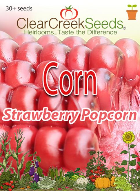 Corn – Strawberry Popcorn (30+ seeds)