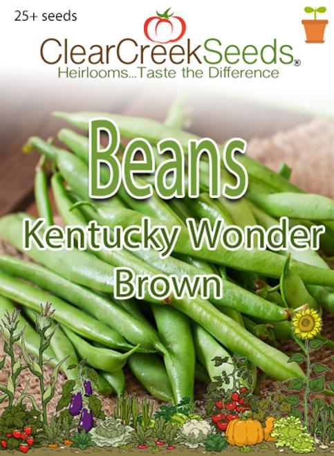 Bean (Pole) - Kentucky Wonder Brown (25+ seeds)