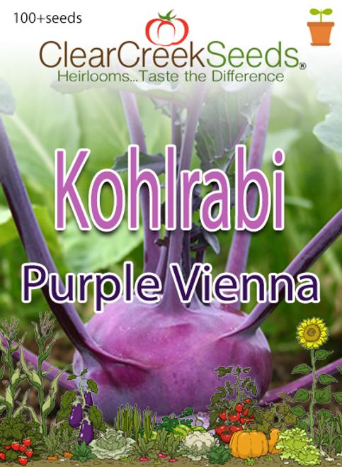 Kohlrabi Seeds - Purple Vienna (100+ seeds)