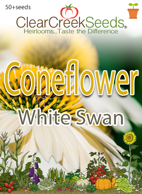 Coneflower - White Swan (50+ seeds)