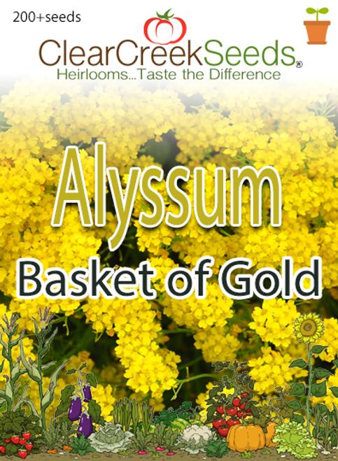 Alyssum - Basket of Gold (200+ seeds)
