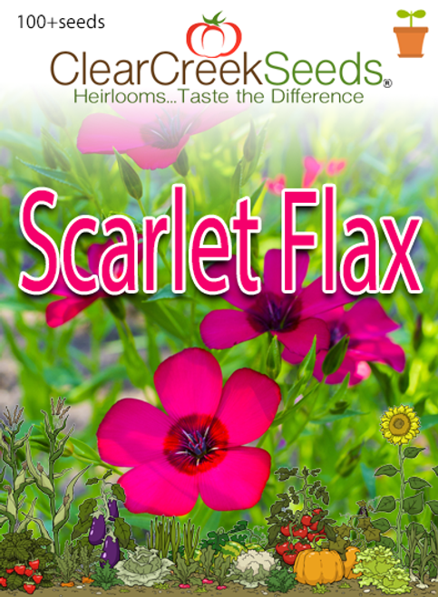 Scarlet Flax (100+ seeds)