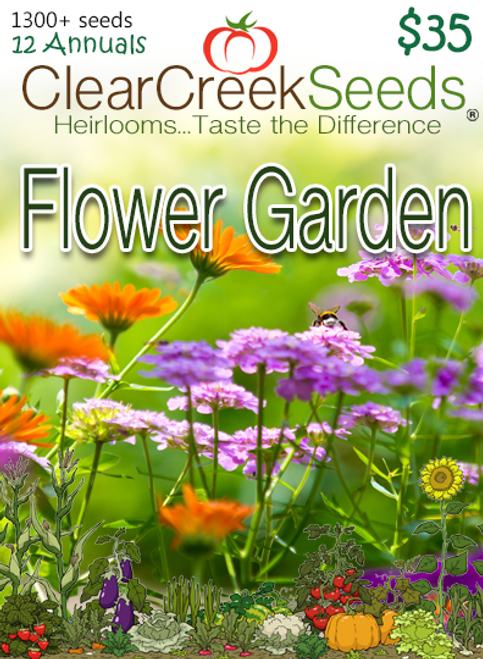 Flower Garden (12- Packs) Varieties may vary