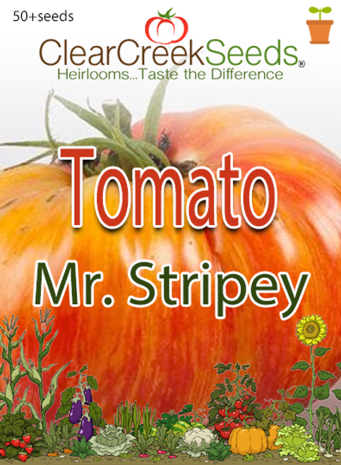 Tomato Seeds - Mr. Stripey (50+ seeds)