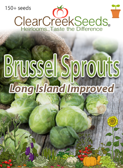 Brussels Sprouts - Long Island Improved (150+ seeds)