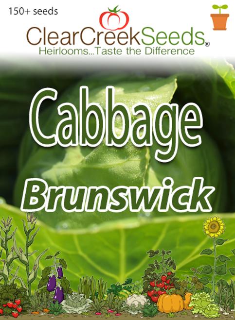 Cabbage - Brunswick (150+ seeds)