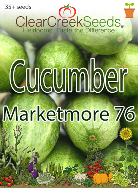 Cucumber - Marketmore 76 (35+ seeds)