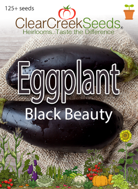Eggplant - Black Beauty (125+ seeds)
