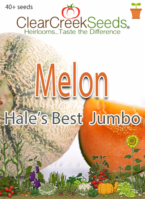 Melon - Cantaloupe Hale's Best Jumbo (40+ seeds)