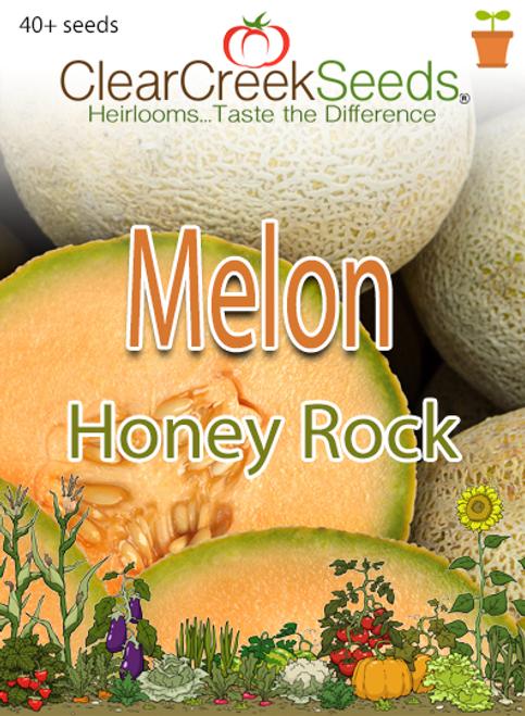 Melon - Cantaloupe Honey Rock (40+ seeds)