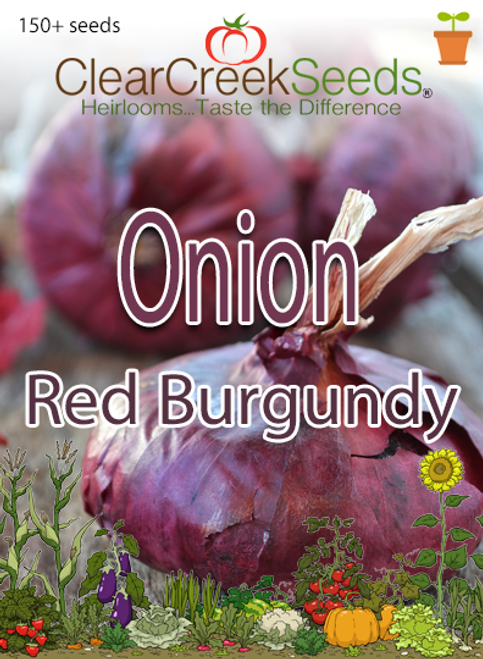 Onion - Red Burgundy (150+ seeds)