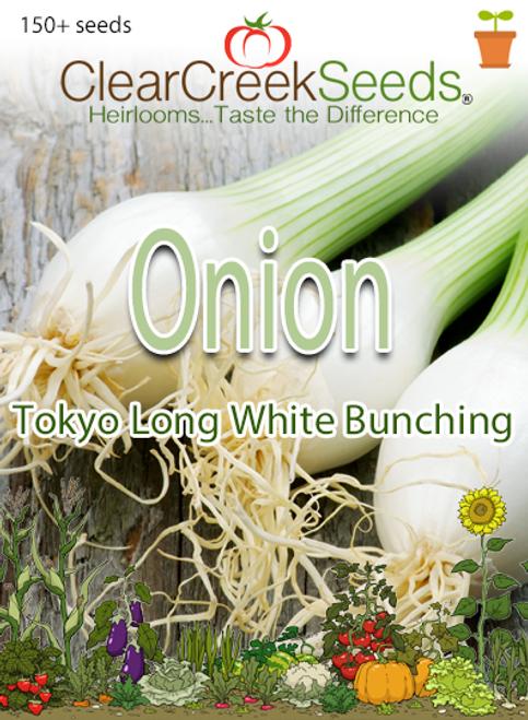 Onion - Tokyo Long White Bunching (150+ seeds)