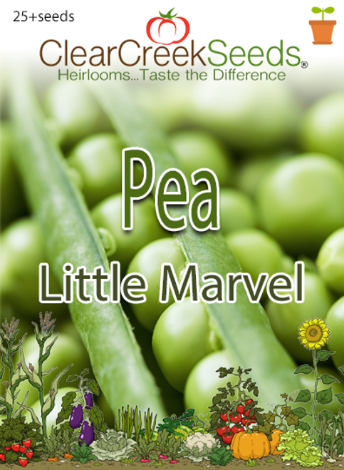 Pea Shelling - Little Marvel (25+ seeds)