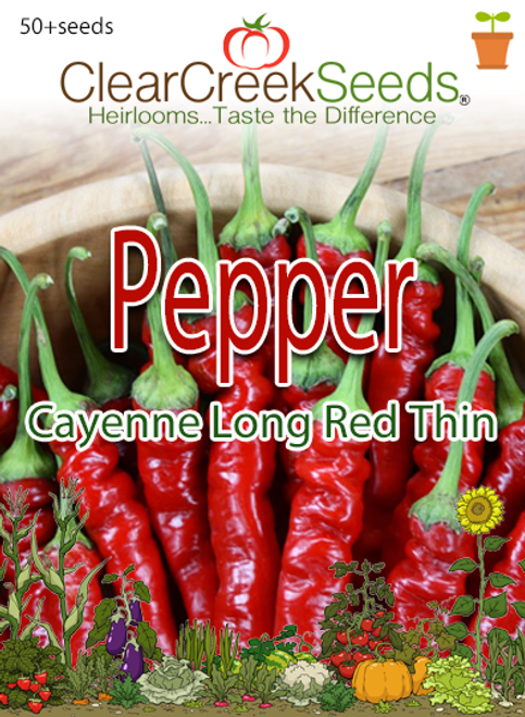 Pepper Hot - Cayenne Long Red Thin (50+ seeds)