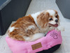 Pepsi enjoying this cute princess pink reversible bed :)