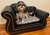 Zoey on her new sofa :). Thank you for sending in the pic :) Adorable