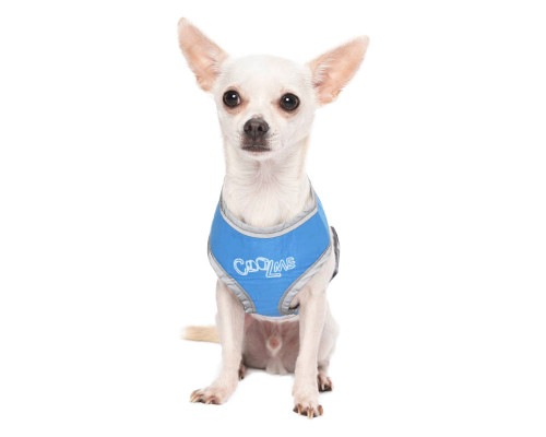 Freeze Ice-Padded 'Cool Canine' Puppy Harness