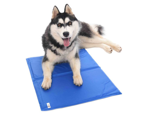 Freezing Ice Cooling Gel - PVC Dog Cushion
