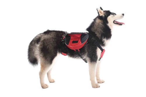 'Roaming Rover' Waterproof Adjustable Dog Backpack
