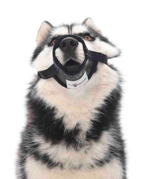 'Soft and Strong' Mesh Nylon Dog Muzzle