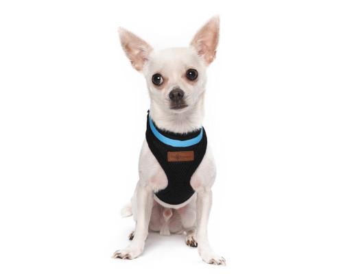 Puppy Flashing Light-Up LED Safety Dog Harness