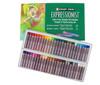 CrayPas Expressionist 50pc set