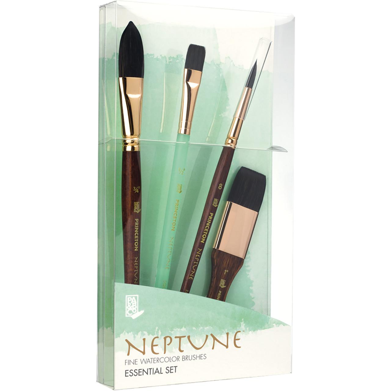 Princeton Neptune Professional 4-brush Box Set