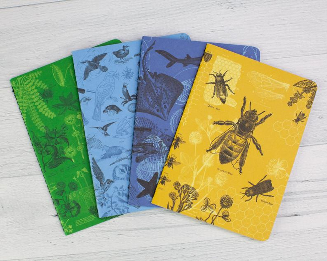 Life Science Notebook Set 4