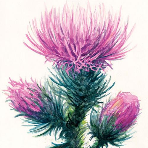 artist Woodward Payne watercolor