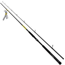 Daiwa Seabass Fishing Rods