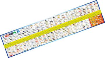 AFN Maxi Fish ID guide measure mat