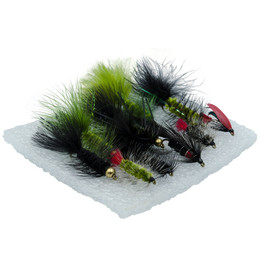 Wildfish Fly Fishing Pack Flies