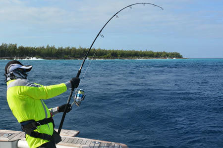 Shimano Fishing Rods For Sale
