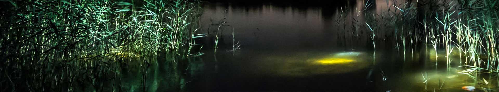 Peftect Image LED Lights