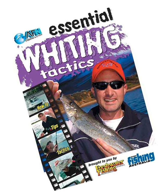 Image of AFN Essential Whiting Tactics Fishing DVD