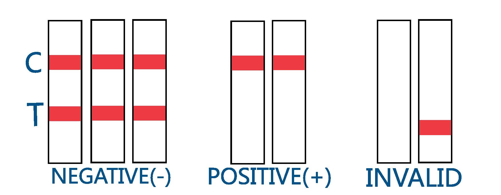 Drug Test Interpretation of Results Negative Positive Invalid Chart