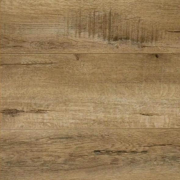 Woodland Forest Oak