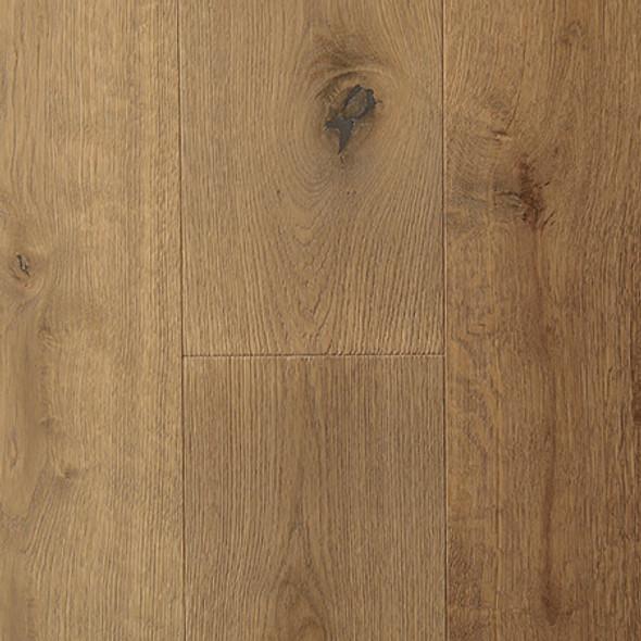European Oak - Amiens