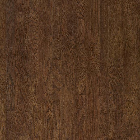 Bark Oak (AMP2)