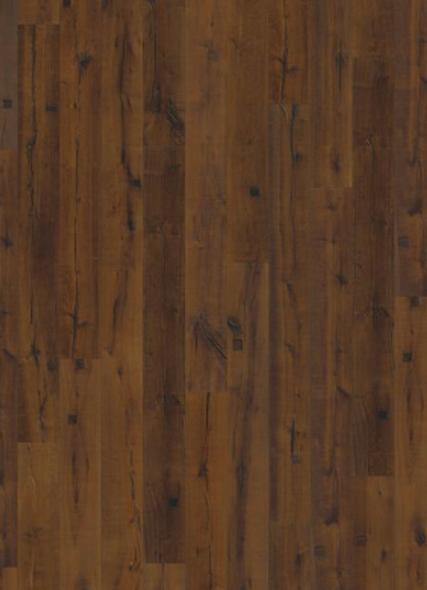 Oak Sparuto 1 strip