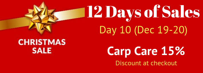 12-days-of-christmas-sales-day-10.png