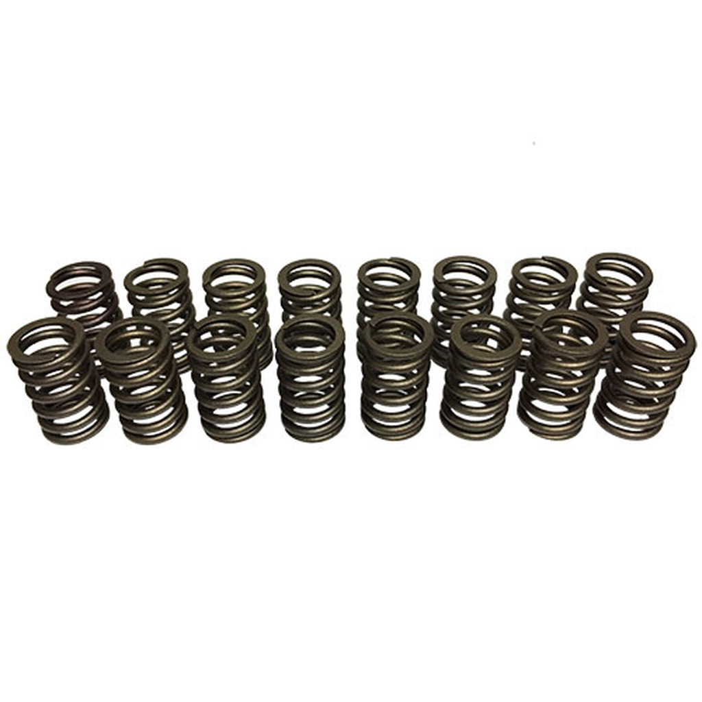 602 Replacement Valve Springs - Set of 16