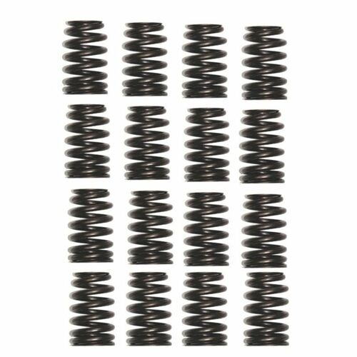 Chevrolet Performance 19420455 - Chevrolet Performance Valve Springs